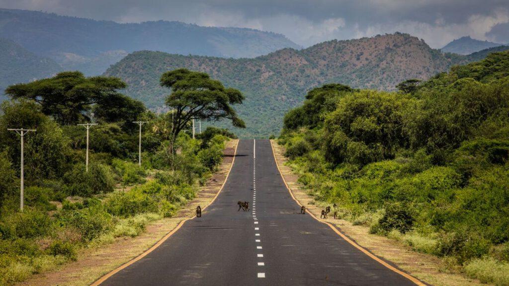 Rondreizen door Zuid-Afrika